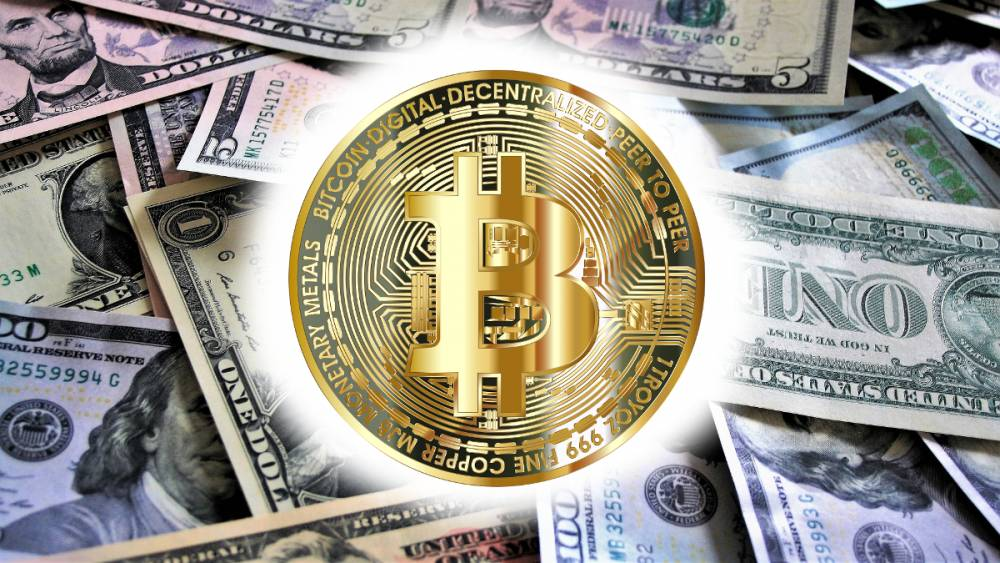 "Increase in ""Bitcoin"" searches compared to 2017 ico"