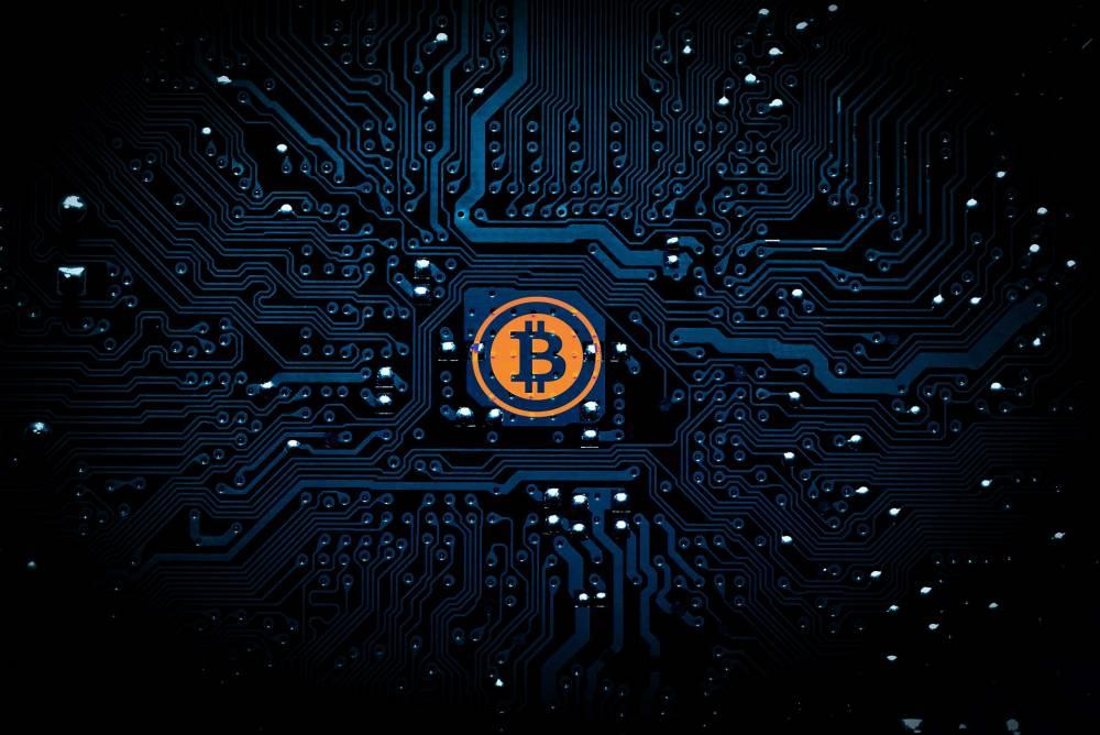 Demographic shifts among crypto investors
